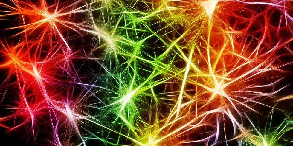 Klinische Neurologie – Die Parkinson Erkrankung und andere Bewegungsstörungen