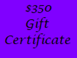 Gift Certificate for $350 Value