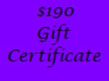 Gift Certificate for $190 Value