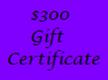 Gift Certificate for $300 Value