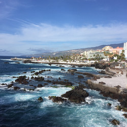 Experience the Canaries