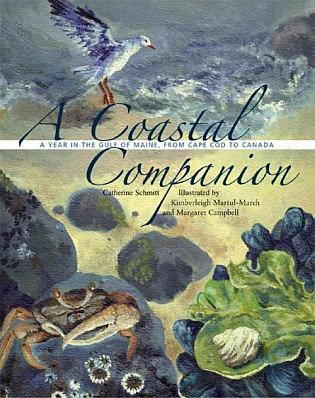 A Coastal Companion