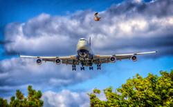 jumbo landing
