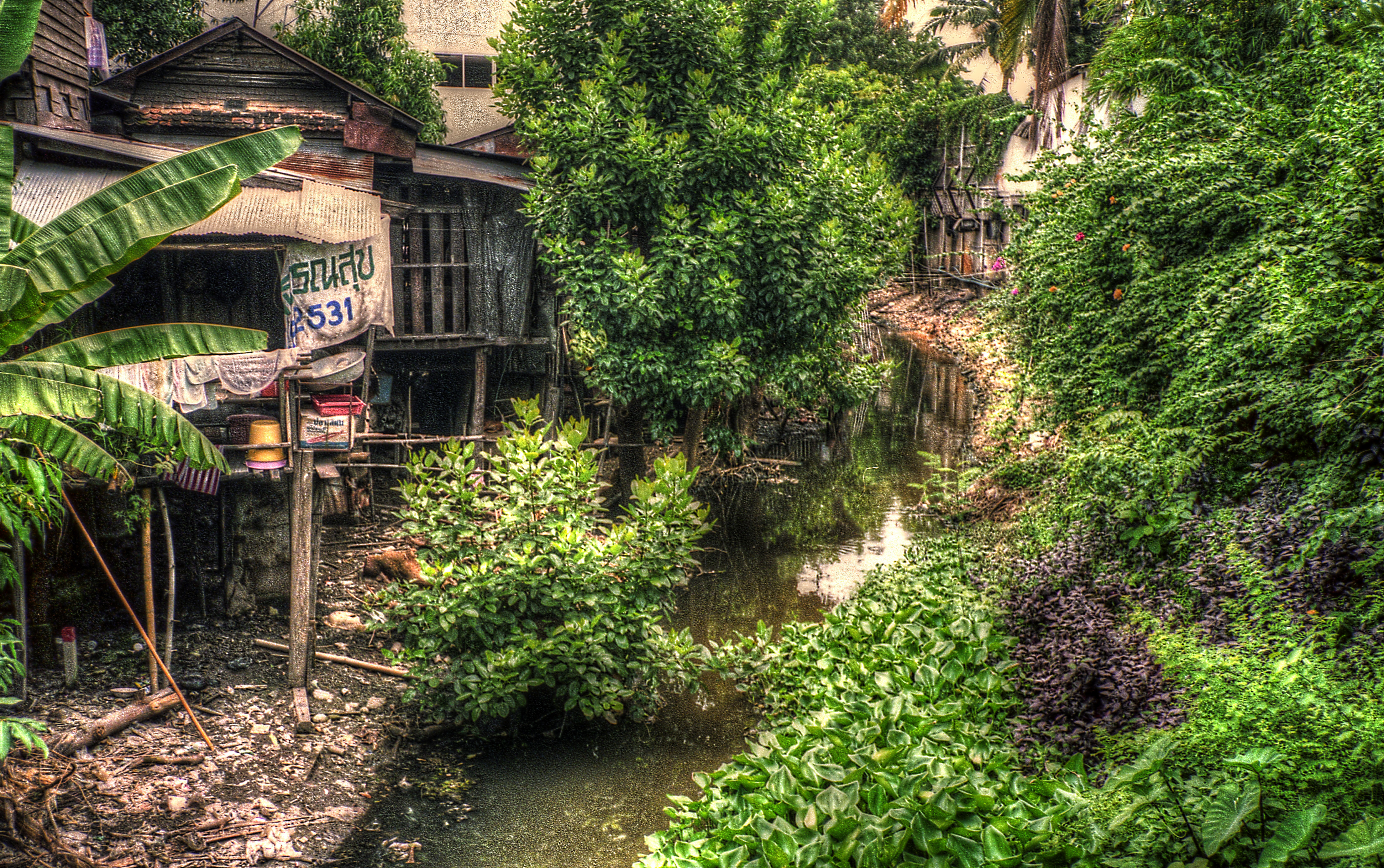 chiang mai creek