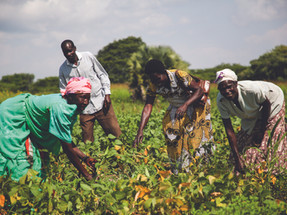 Field of Hope's Mission to Educate and Enhance Lives of Youth and Farmers in Developing Communities
