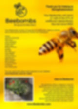 Beebomb Consumer Factsheet.jpg