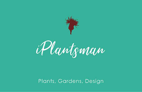 darker Teal  rectangular  white text iPlanstman Logo with  brown thistle No Border LN 2018.jpg