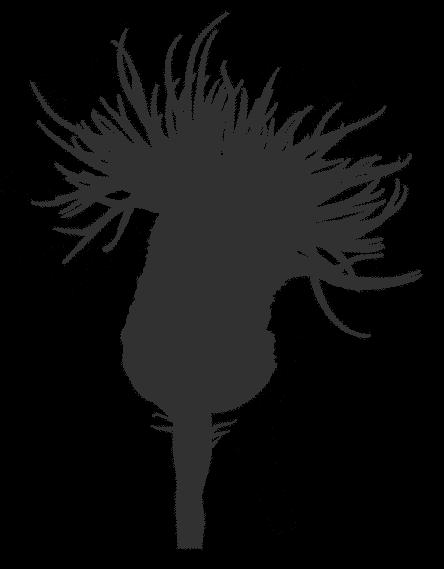 iPlantsman Logo Silhouette