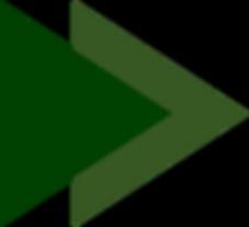 driehoek site groen .png