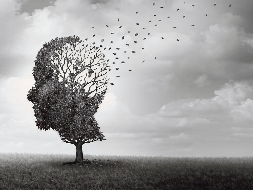 Alzheimer, Demenz, Gehirn, Prävention, Forschung, Spende, Förderung