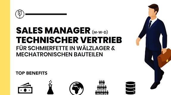 SALES MANAGER (M-W-D) SCHMIERFETTE & WÄLZLAGER