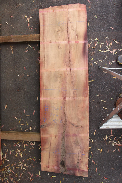 64mm English air dried yew (#10009)