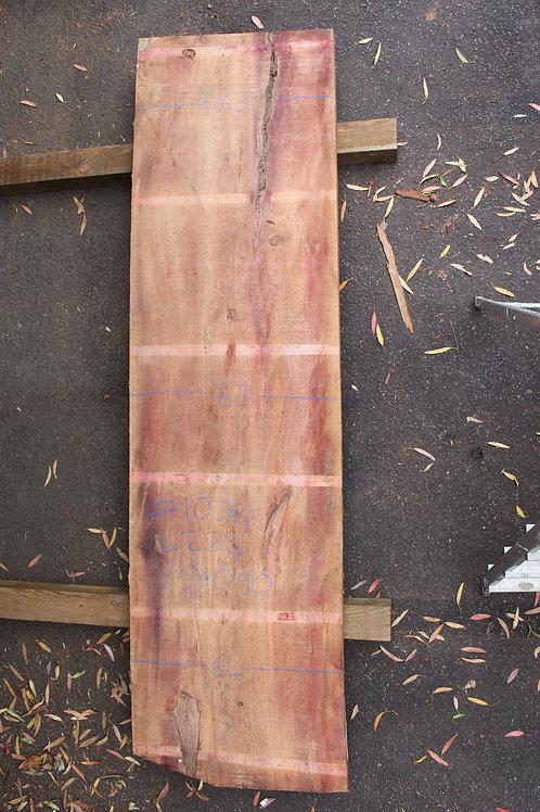 64mm English air dried yew (#10011)