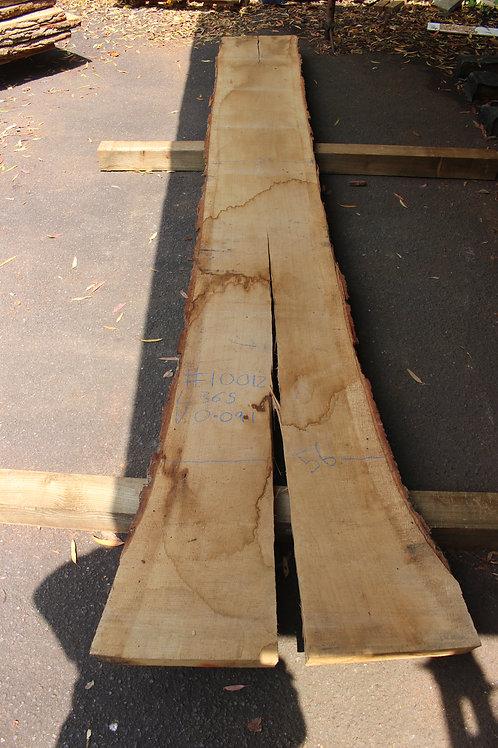 50mm English air dried oak (#10012)