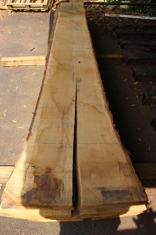 50mm English air dried oak (#10018)