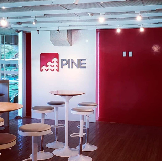 Pine 03.jpg