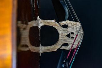 cello-4412392.jpg