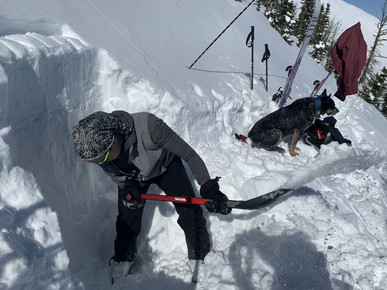 Digging a pit to check for avalanche risk