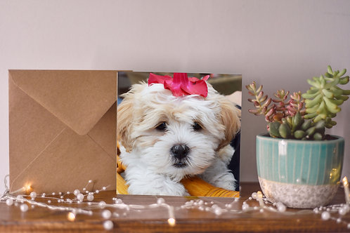 Petal Puppy Greetings Card