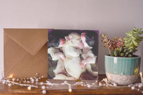 'Newborn' Greetings Card