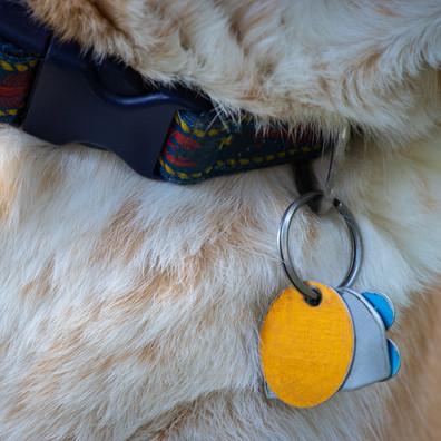 Preventing pet theft: 4 precautions pet lovers can take