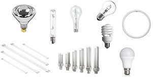 Lamps-e1561478394751.jpg