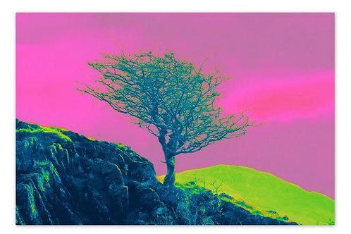 Cliff Tree Blue A4 Print