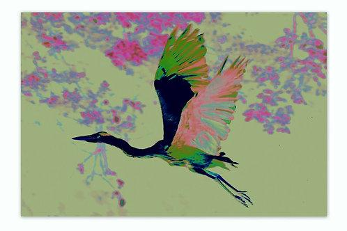 Heron Lime A4 Print