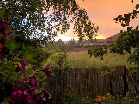 Impressionen eines Sommerregens