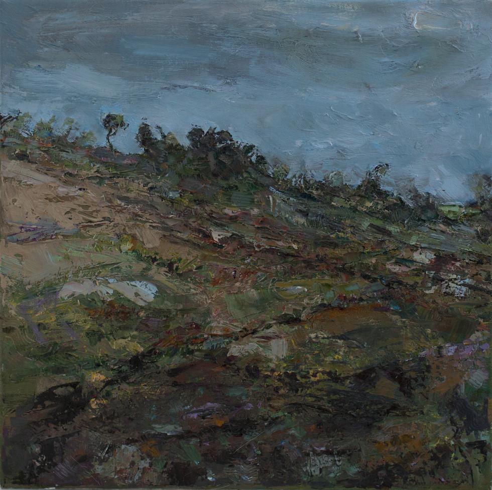 David Whibread-Roberts Artist
