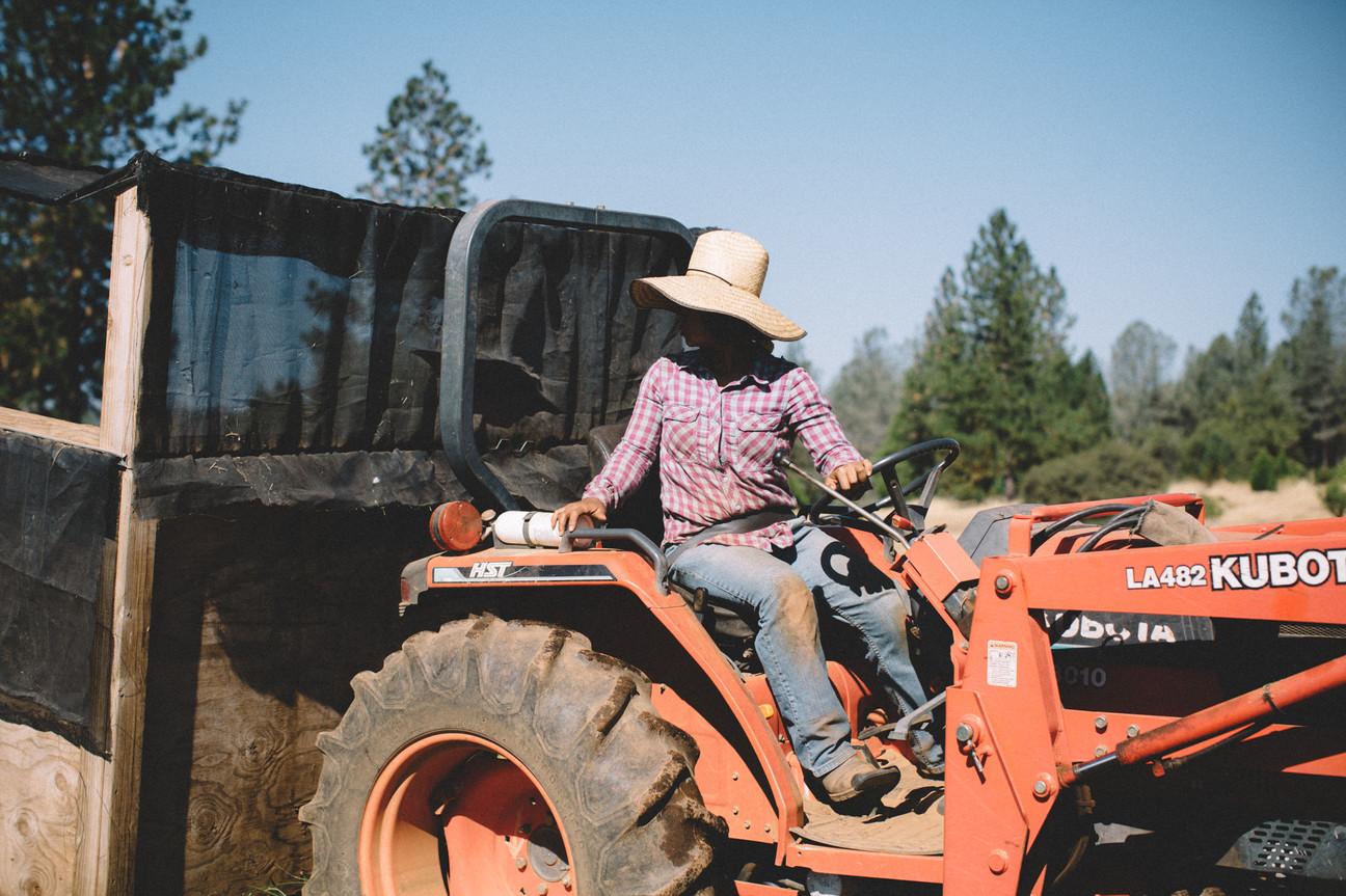 INGRID NELSON LIFESTYLE mountian bounty farm Nevada City
