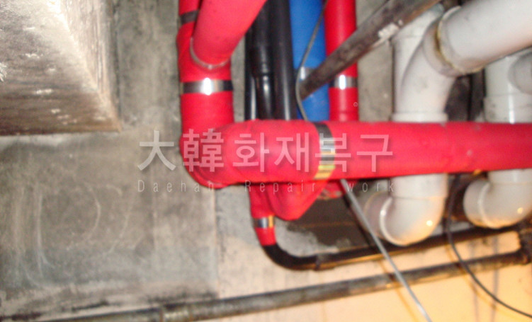 DSC03551.JPG