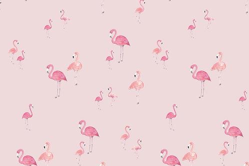 Flamencos pink