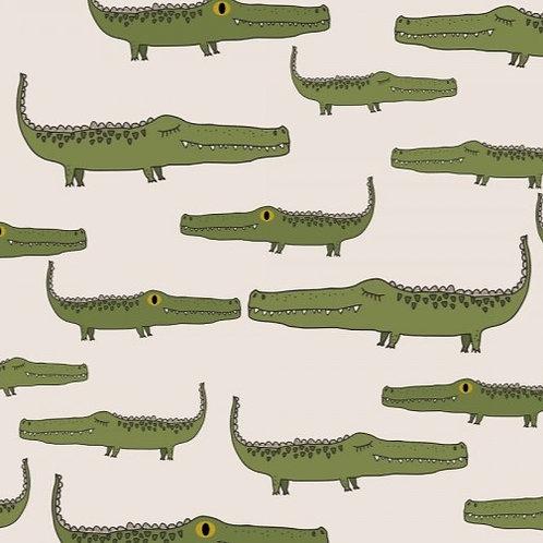 Alligator (organic)