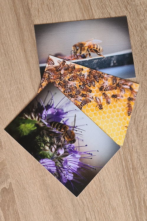 Postkarten 3er Set Bienen