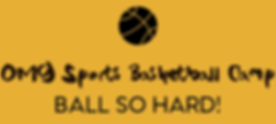 omg sports bball camp_edited.png