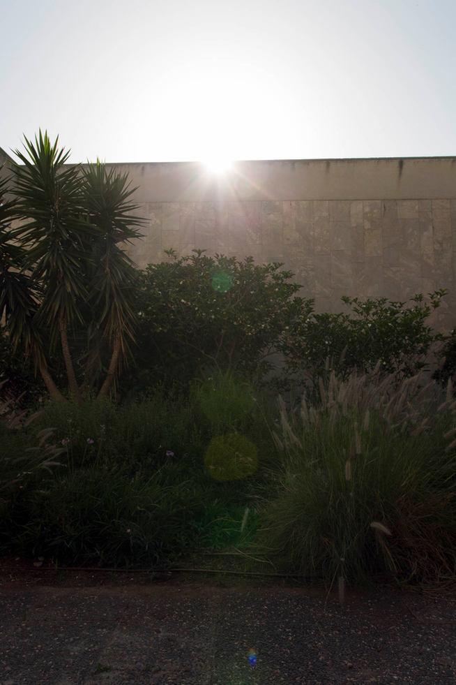 אור וצל, תל אביב 2020