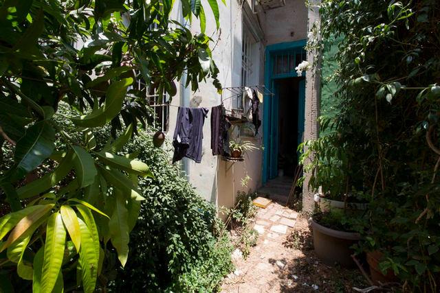 חצר של נכס ברחוב ציונה תג׳ר יפו, 2020