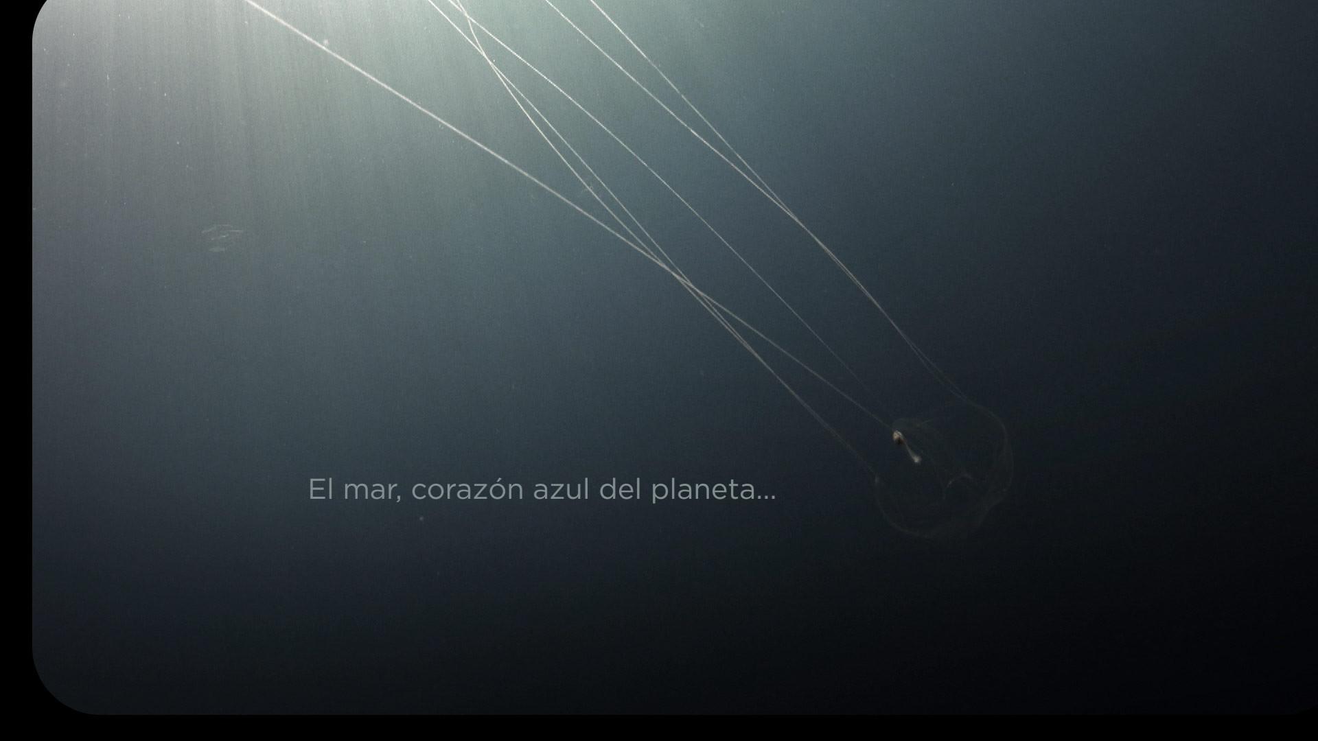 CORTINILLA-EXPEDICION-(0;00;33;09).jpg