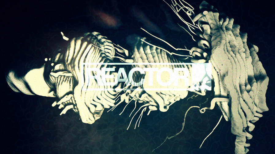 REACTOR 2012_01517_3.jpg
