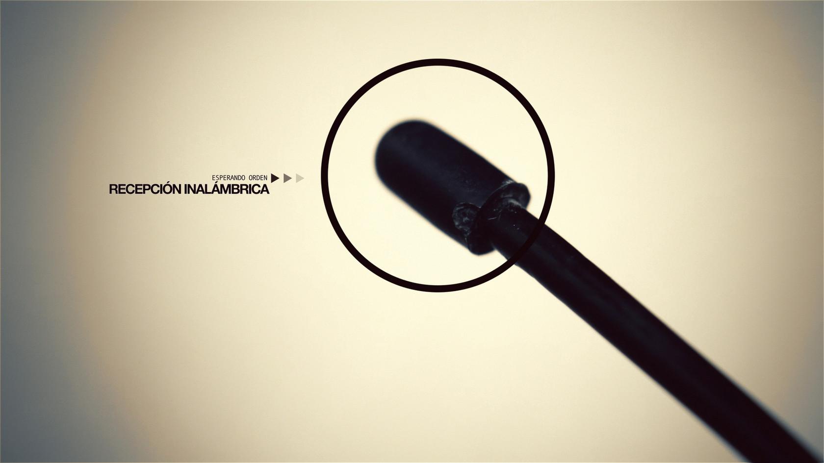 REACTOR 2012_02325.jpg