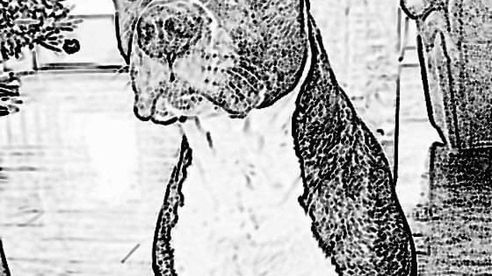 Laser engraved Pit Bull dog on wood