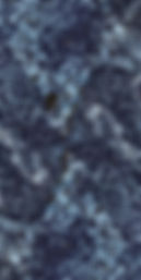 Araldica Base Blu.jpg