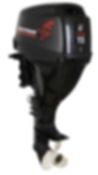 лодочные моторы Golfstream F15FWL