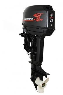 лодочные моторы Golfstream T25FWLS