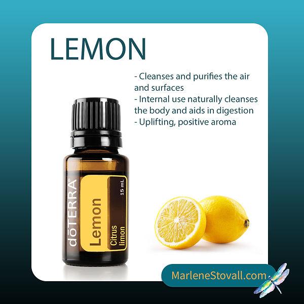 Lemon Oil Marlene.jpg