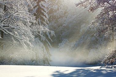 winter-1060531_1280 pixabay.jpg