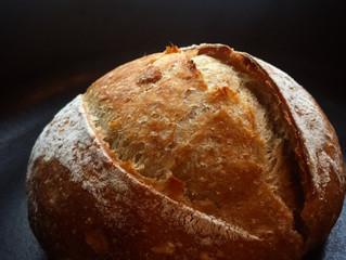 オンラインレッスンコース 発酵食品のサイクル