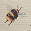 Thumbnail: LARGE Bees cushion cover - 10cm Bumblebees! Tapestry effect fabric
