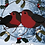Thumbnail: Robins in mistletoe and holly ring - Christmas Decoration - Hanging wreath